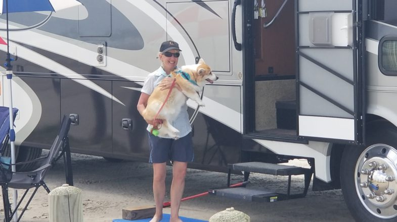 rv camping dogs